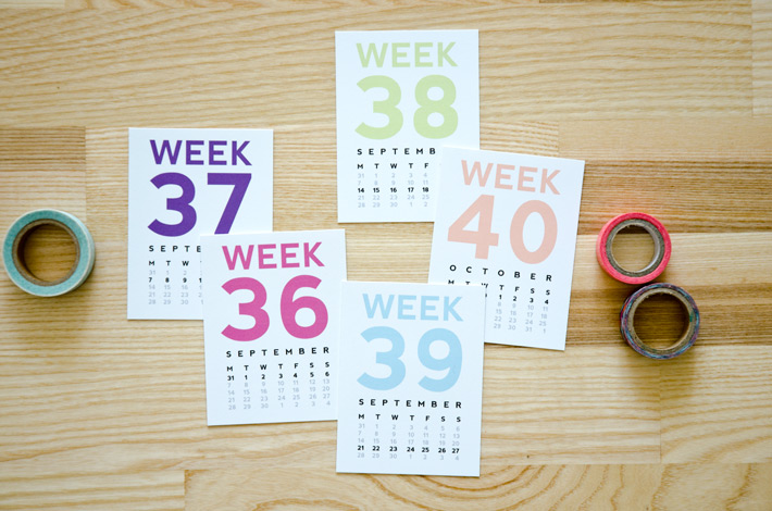 Project Life Week Number Cards by Nina Christensen, Paper Nerd